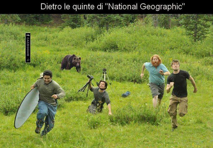 Non sempre i documentari  della National Geographic sono come li vedete in tv :)  L'orso si è stufato di farsi riprendere.