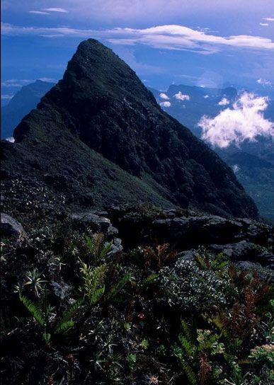Pico da Neblina- o topo do Brasil-3014 m de altitude,