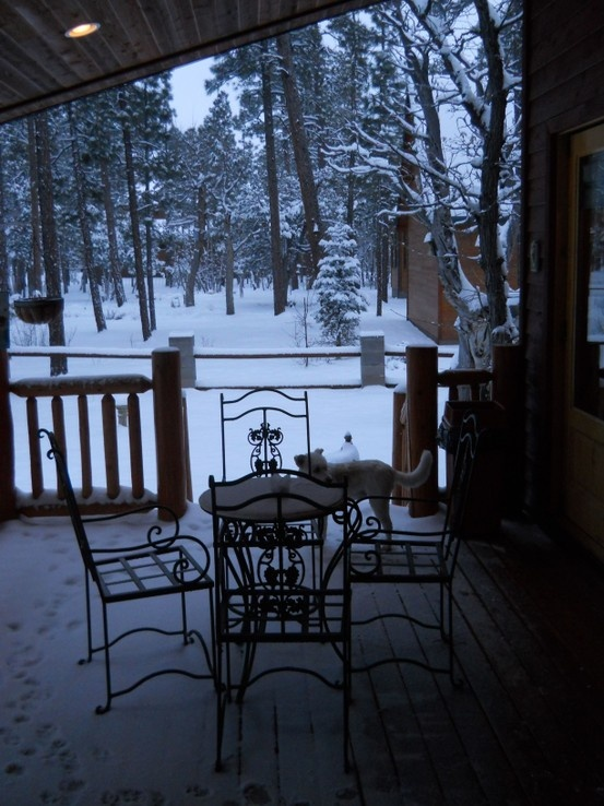 17 Best Images About Pinetop Arizona Vacation On