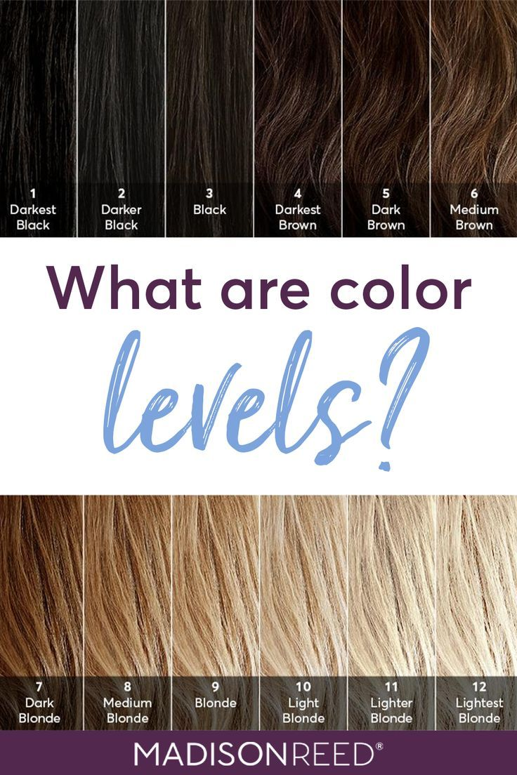 Dear Color Crew What Level Is My Hair Brown Hair Levels Levels Of Hair Color Brown Hair Color Chart