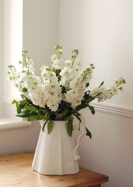"white stock flowers (Victorian meaning: ""bonds of affection; promptness; you'll always be beautiful to me"")"