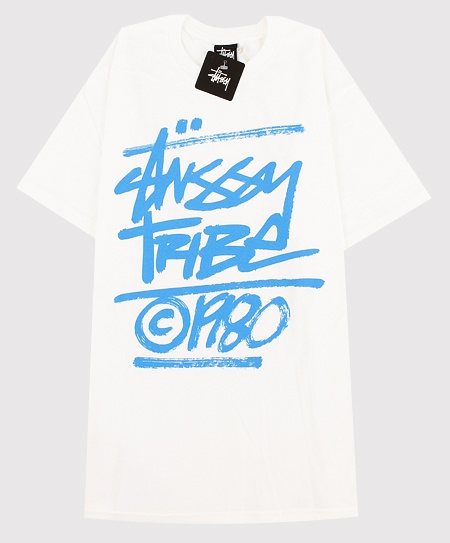 Stussy The Tribe Brush T-Shirt in White
