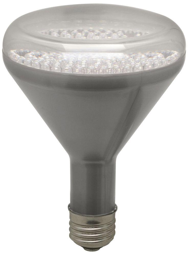 Edison Screw Led Light Bulbs
