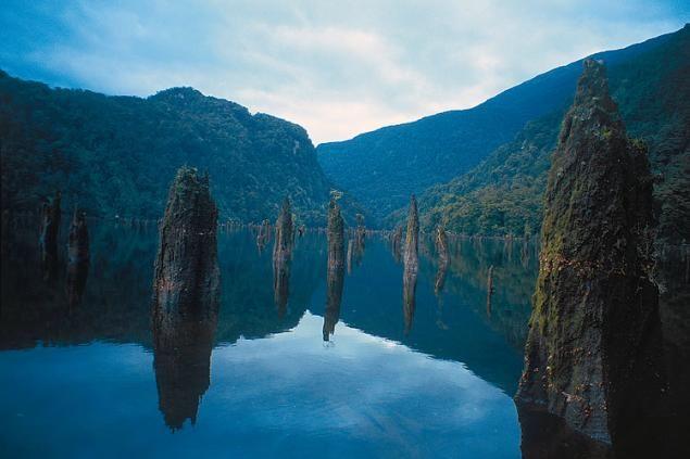 Dusky Sound, Uusi-Seelanti.