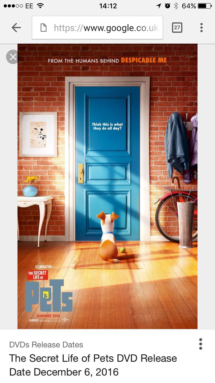 The Secret Life of Pets DVD out on 6th December 2016