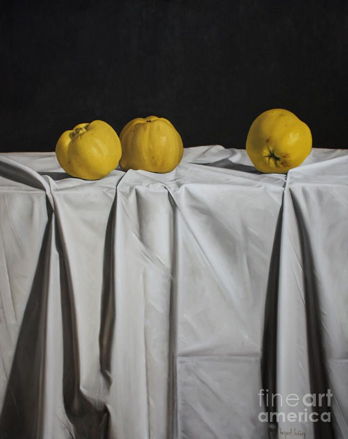 Best STILL LIFE FLORALS Images On Pinterest Oil Paintings - Hyper realistic paintings nunez