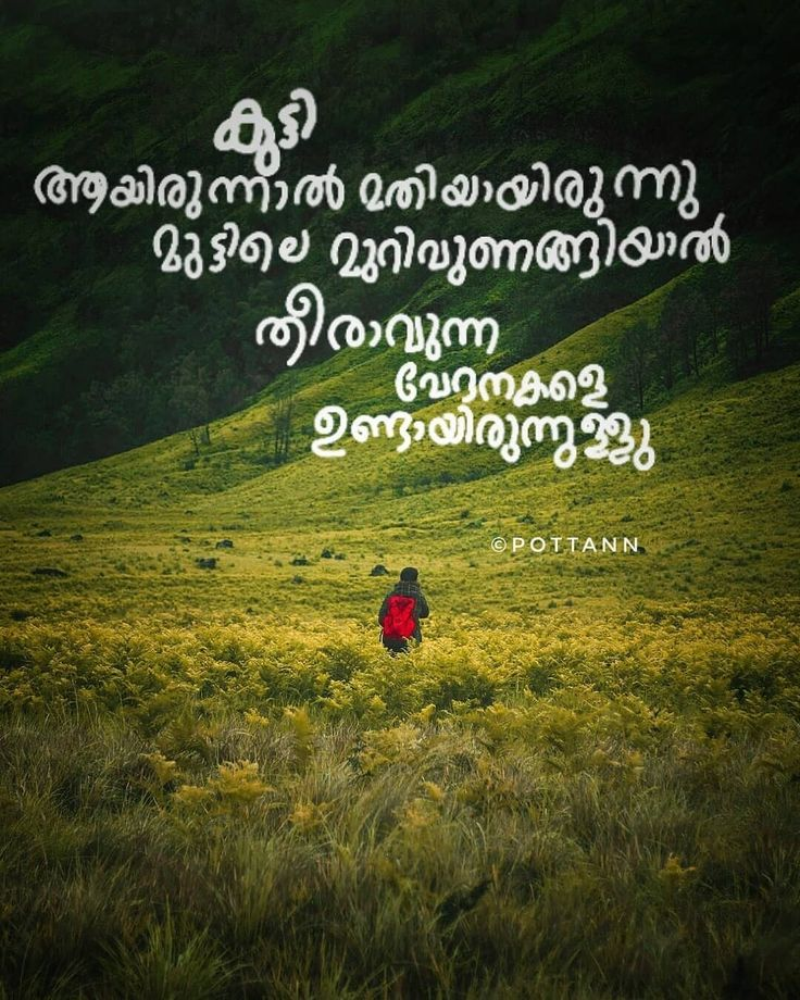 97 Best Malayalam Quotes Images On Pinterest