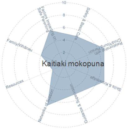 Kaitiaki Mokopuna - circle graph