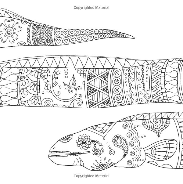 Advanced Ocean Coloring Pages : Eel ocean underwater sea coloring pages colouring adult