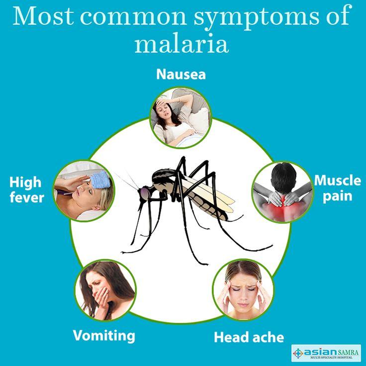 Most common symptoms of malaria #AsianSamra #Delhi #Health #HealthTip #Malaria