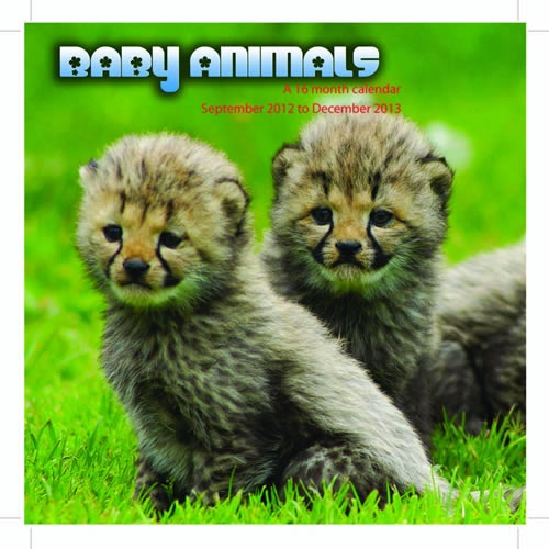 Buy Baby Animals 2013 Calendar online at Megacalendars This calendar is multi lingual with the month of the year and day of the week in six languages English French German Italian Spanish and Portuguese Small date grids are included making this calendar.  www.megacalendars.com/Baby-Animals-2013-Calendar-MGANM02_p_13822.html