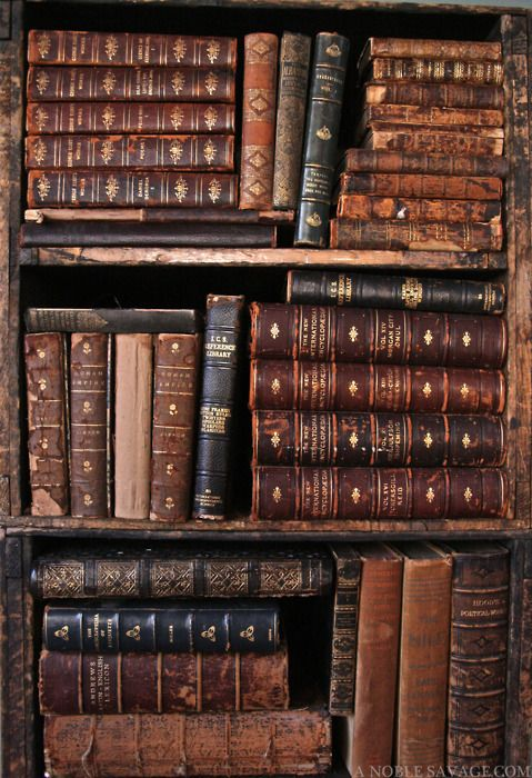 Leatherbound books that fill my head with stories and knowledge #books #vintage #antique
