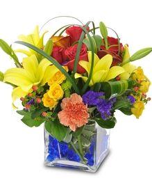 Allen's Flowers and Plants   2013 Best Florist In San Diego   Flowers, Plants, Gift Baskets, Wedding Flowers, Sympathy Flowers, Event Flowers   Local Flower Delivery San Diego, La Mesa, El Cajon, La Jolla, Chula Vista, Coronado, Del Mar, Encinitas, Escondido, Carmel Valley, Anywhere In The USA!