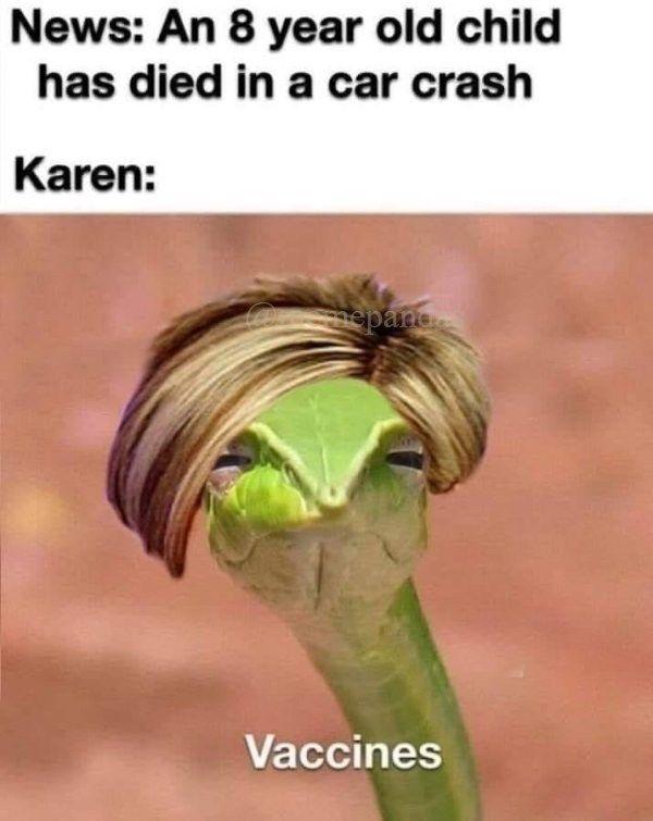 Karen Memes Karen Memes Silly Memes Memes