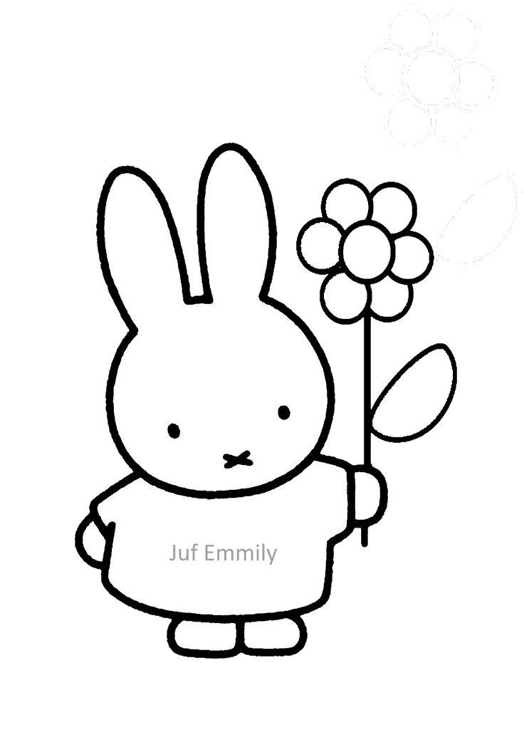 Nijntje heeft een bloem (Juf Emmily)