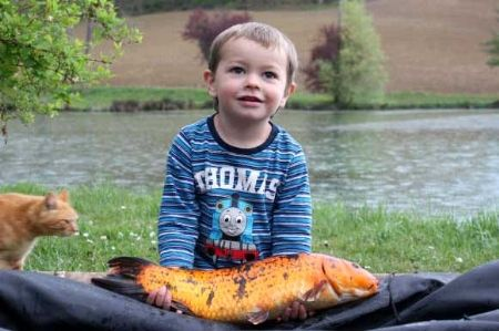 quotes about taking a kid fishing | Take a Kid Fishing. - The Fishing Website Forums