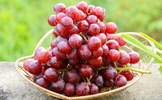 15 Benefits Of Red Grapes For Skin, Hair And Health
