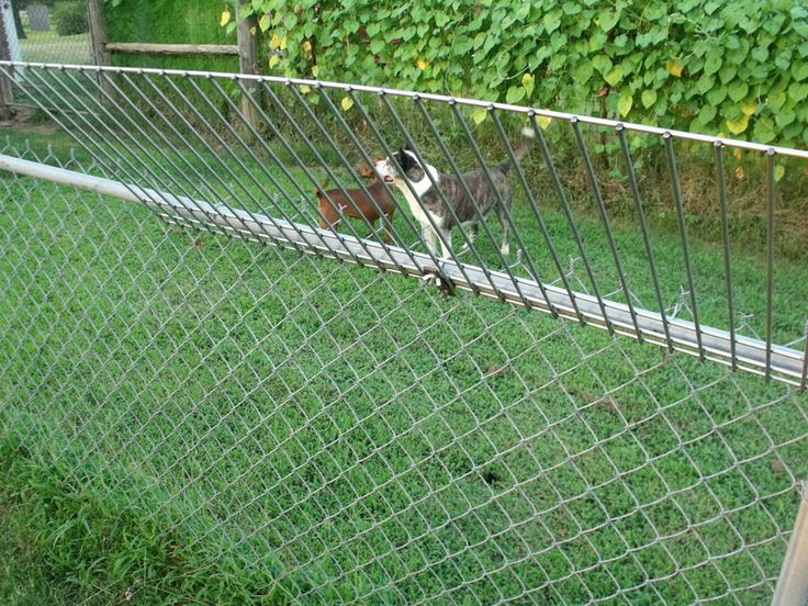 Climb Stopper — stop dogs from jumping or climbing your chain link fence.