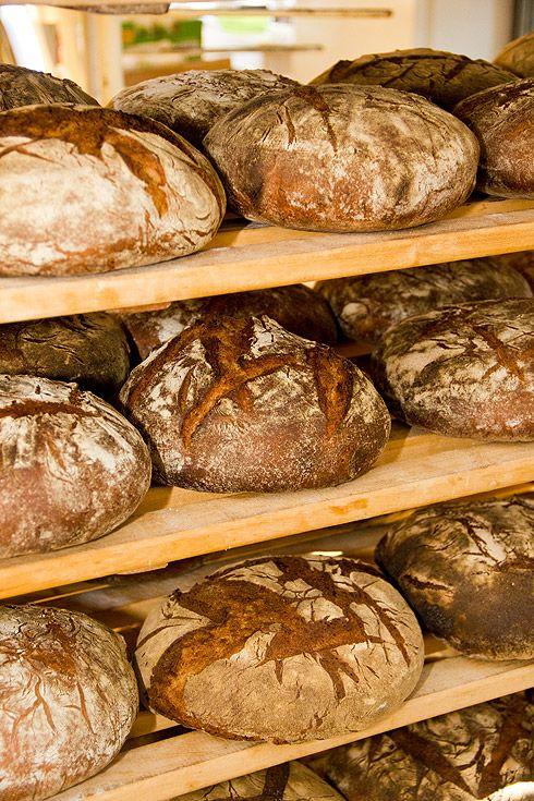 Ploetzblog - Selbst Brot und Brötchen backen