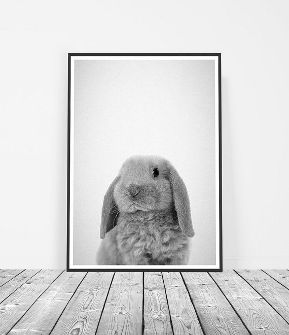 Nursery Decor, Nursery Art, Bunny Print, Baby Animal Print. Art Prints for the walls of your home by Little Ink Empire