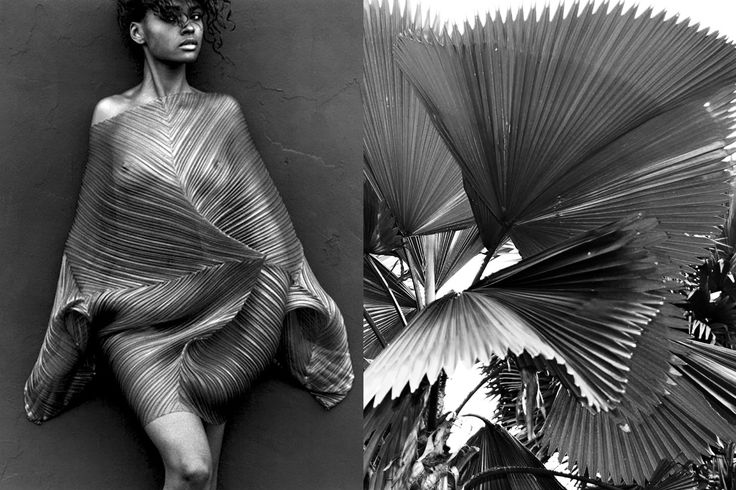 Match #282Karen Alexander wearing Issey Miyake photographed by Herb Ritts in 1989  Leaves of theLicuala Grandis (as known as the Ruffled Fan Palm)More matches here