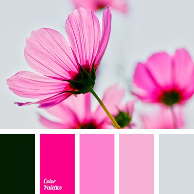 Color Palette #3404