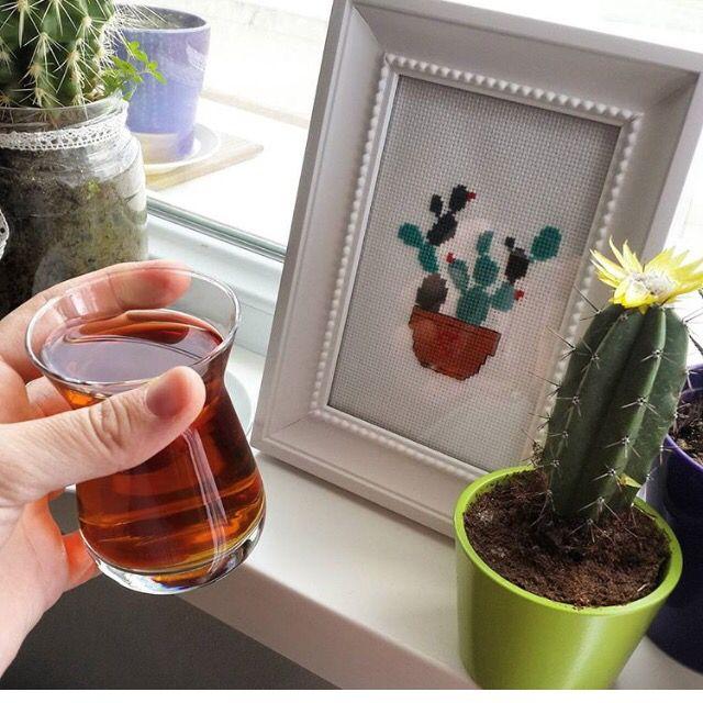 Cactus,cross stitch, tea, Kaktüs,çarpıişi,kaneviçe,çay