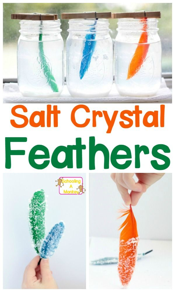 Simple and beautiful science project: salt crystal feathers! A great way to explore crystallization!