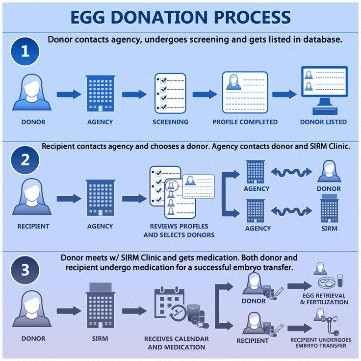 Stuff ....love Sperm donation legal