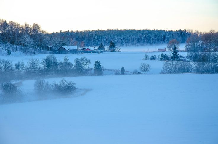 RdeUppsala posted a photo:  at sunset, the mist resting over the winter fields/Paisaje, la neblina del atardecer sobre los campos de invierno/Kvällning, dimman vilar över åkrarna.
