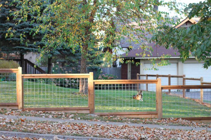 Hog panel fence