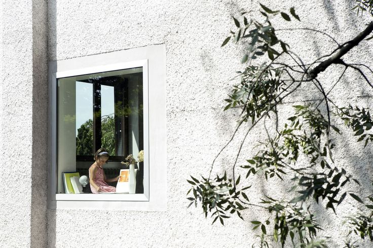 Conquer the garden. Bring nature inside. Two new windows. A tree right at the back. Inside, a faux wall slides through the living areas of the house changing the relations between the spaces.
