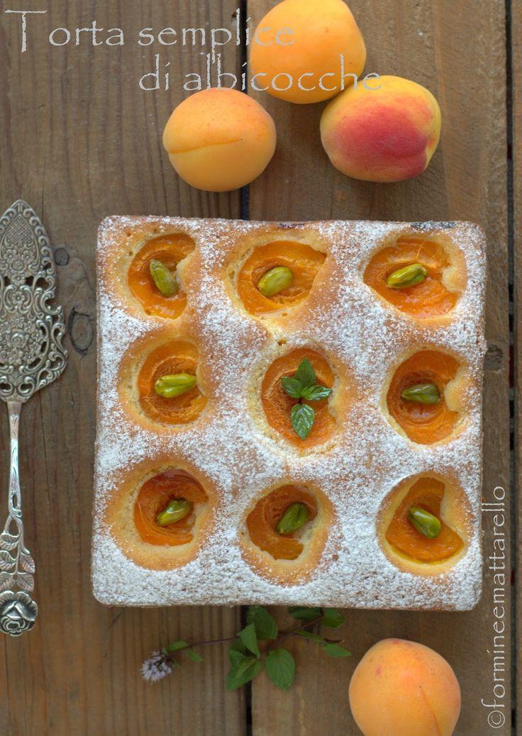 """formine e mattarello: Torta semplice di albicocche e la """"Marmor & Marillen"""""""