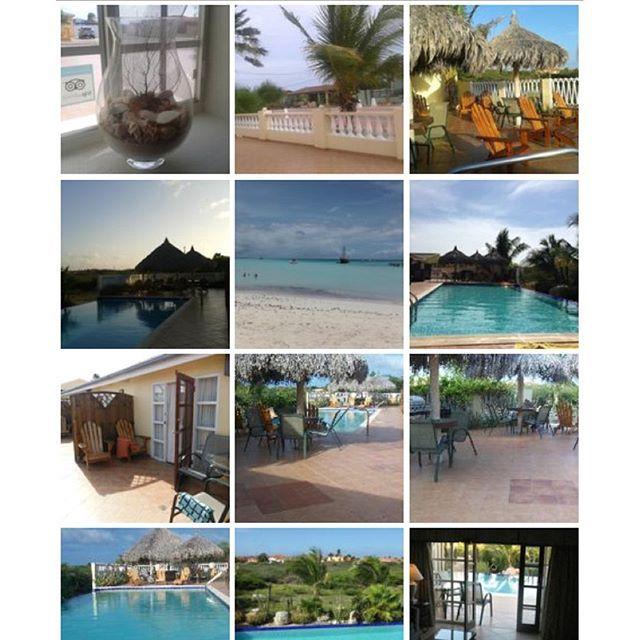 """Oasis in Paradise"", a recently modernized 100 year old Cunucu Residence, is a cozy haven located in a quiet prestigious area & 2 minutes from the beach! Visit us at Aruba Cunucu Residence!  www.arubacunucuresidence.com #EagleBeach #PalmBeach #BabyBeach #ArashiBeach #Aruba #OneHappyIsland #ILoveAruba #ArubaCunucuResidence #islandgetaway  (scheduled via http://www.tailwindapp.com?utm_source=pinterest&utm_medium=twpin&utm_content=post16394496&utm_campaign=scheduler_attribution)"