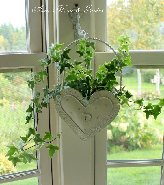 309 Best Images About Ivy Cottage On Pinterest Gardens