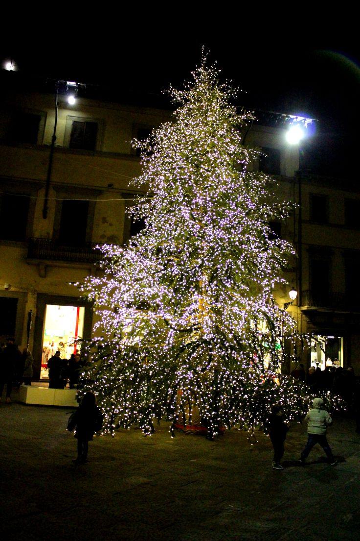 Albero di Natale - p.zza del Comune a Prato