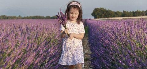 10 ПРАВИЛ ЗДОРОВОГО ПИТАНИЯ, КОТОРЫЕ ЗНАЮТ ФРАНЦУЗСКИЕ ДЕТИ (А БОЛЬШИНСТВО НАШИХ – НЕТ)