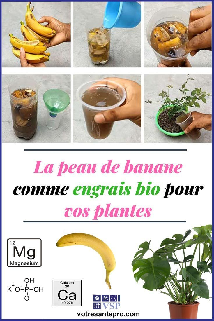 peau de banane engrais liquide
