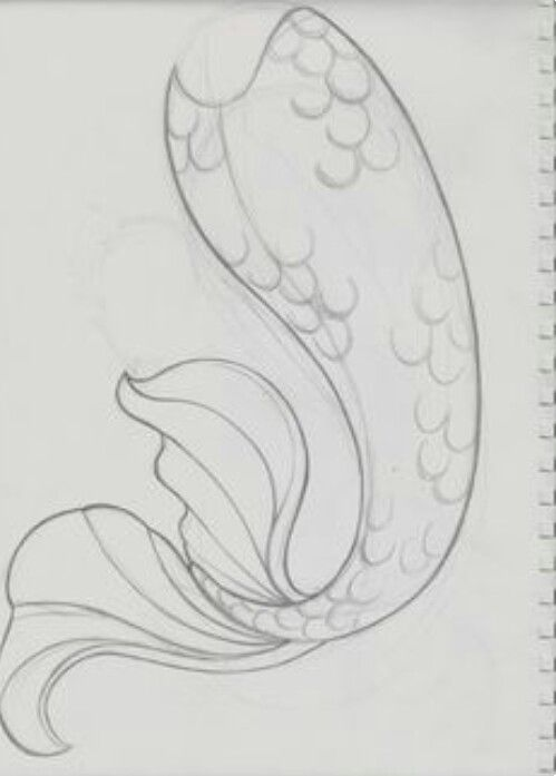Mermaid tail line drawing