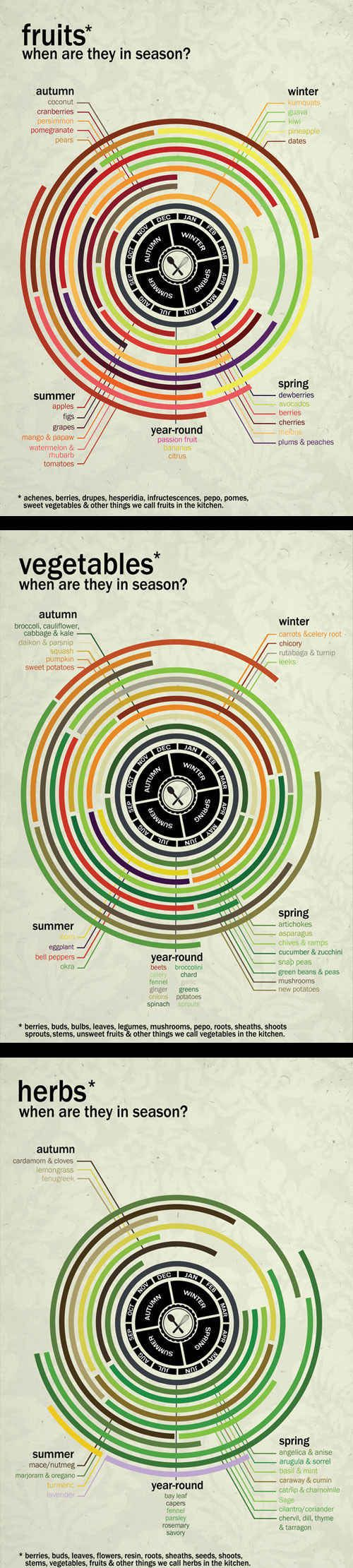 Food ❤️    Infographic - Know which herbs, vegetables & fruits are in season