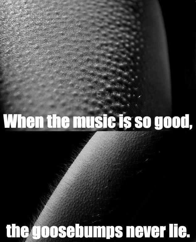 Lyric puscifer lyrics momma sed : 382 best All ThInGs MaYnArD! images on Pinterest   Apc, Maynard ...