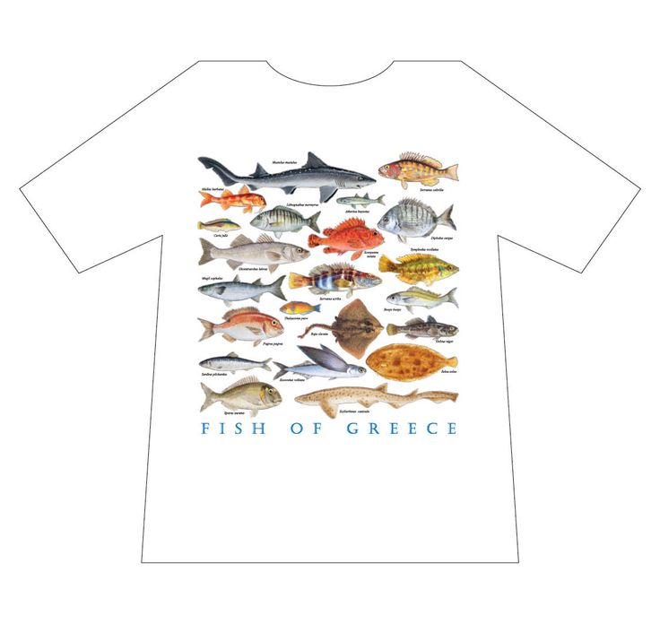 Nature T-shirts, Fish of Greece, T-shirt, mediterraneo editions, www.mediterraneo.gr