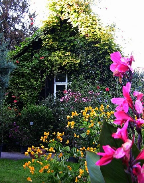 Summer Cottage Garden Pinterest
