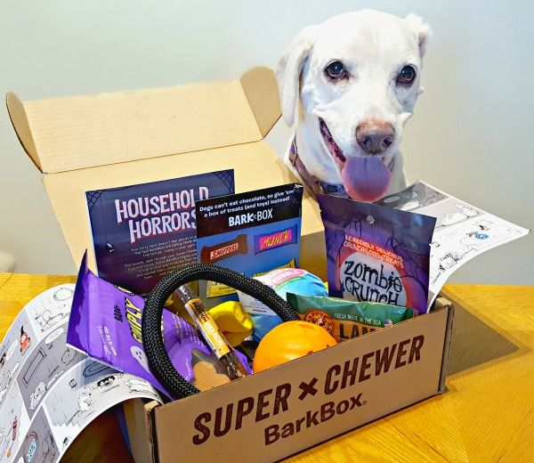 Super Chewer Barkbox For Toy Destroyers Durable Dog Toys Dumb