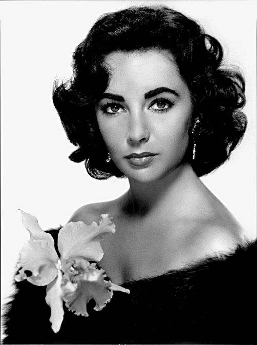 "Dame Elizabeth Rosemond ""Liz"" Taylor, (February 27, 1932 – March 23, 2011) was a British-American actress."