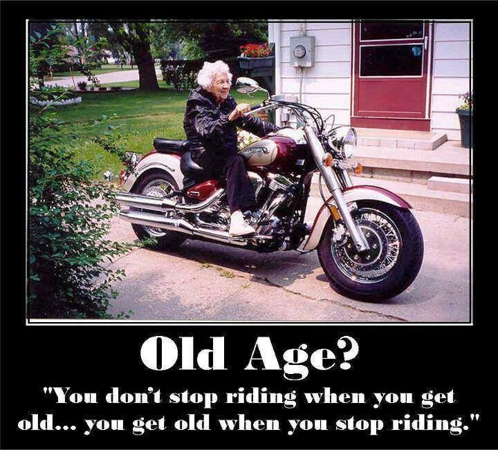 Love Finds You Quote: 1000+ Images About Biker Humor On Pinterest