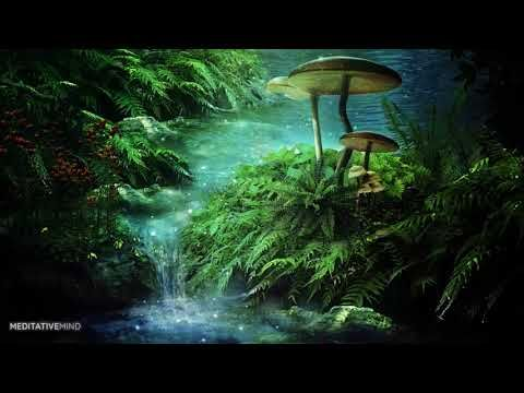 Into a Mystical Forest Enchanted Celtic Music @432 Hz Nature