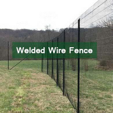 Best 25 Welded Wire Fence Ideas On Pinterest Wire Fence