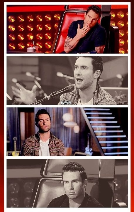 Adam! Adam! Adam!Thevoic Teamadam, Adam Levinemaroon, 3Adam Noah, Adam Levine3, Noah Levine3, Adam Obsession, Team Adam, Adam Levine Maroon, The Voice