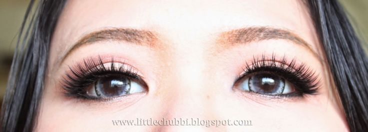 LittleChubbi: Get Dolly Eye With Fake Eyelashes #eyelashes #fakeeyelashes #dollyeyes #dolly #dollyeye #eyemakeup #makeup #fakelashes #beauty #makeover #bigeye #eyes #beautyblogger #beautybloggers #blog #bloggers #blogspot #tutorial #tipsmakeup #review #tutorialmakeup #tips #biggereye